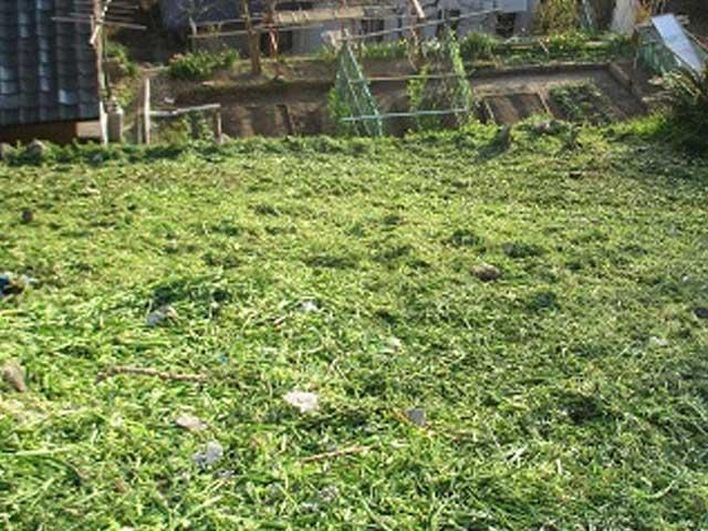 八幡西区で草刈り|アフター